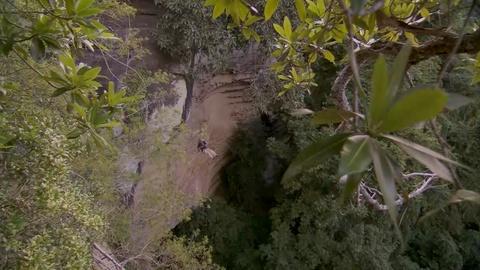 Gorongosa Park -- Jumping Off a Cliff