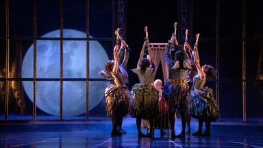 The Fairies Dance for Aurora