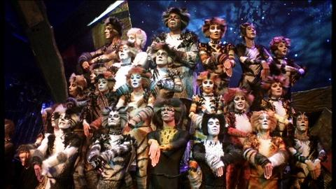 Great Performances -- Cats the Musical: A Preview