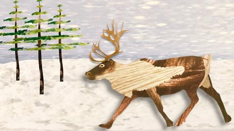 Gross Science -- The REAL Rudolph Has Bloody Antlers and Super Vision
