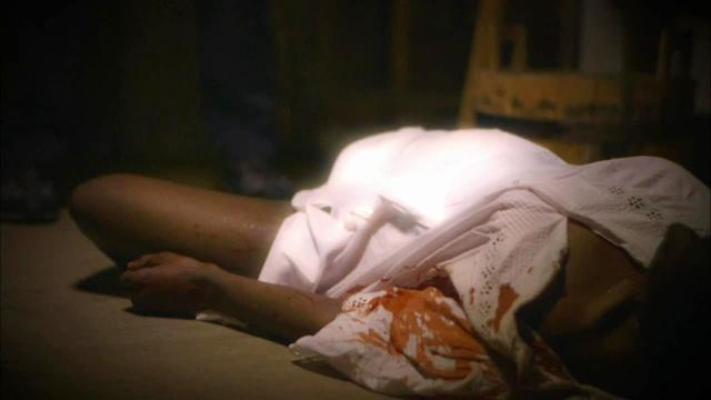 HDSI - Texas Servant Girl Murders
