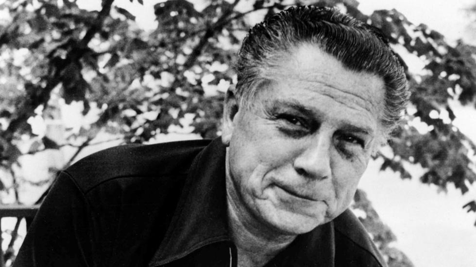 HDSI - Who Killed Jimmy Hoffa? image