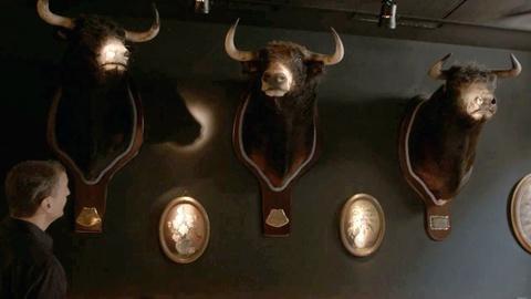 I'll Have What Phil's Having -- Bonus Scene: Bar Canete's Bulls