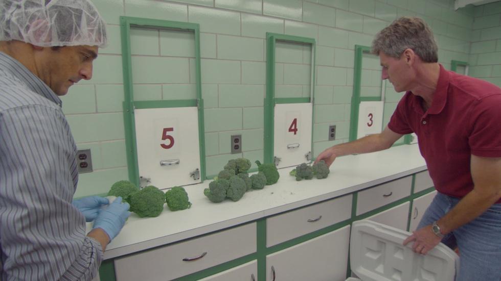 Web Extra: Broccoli Man image