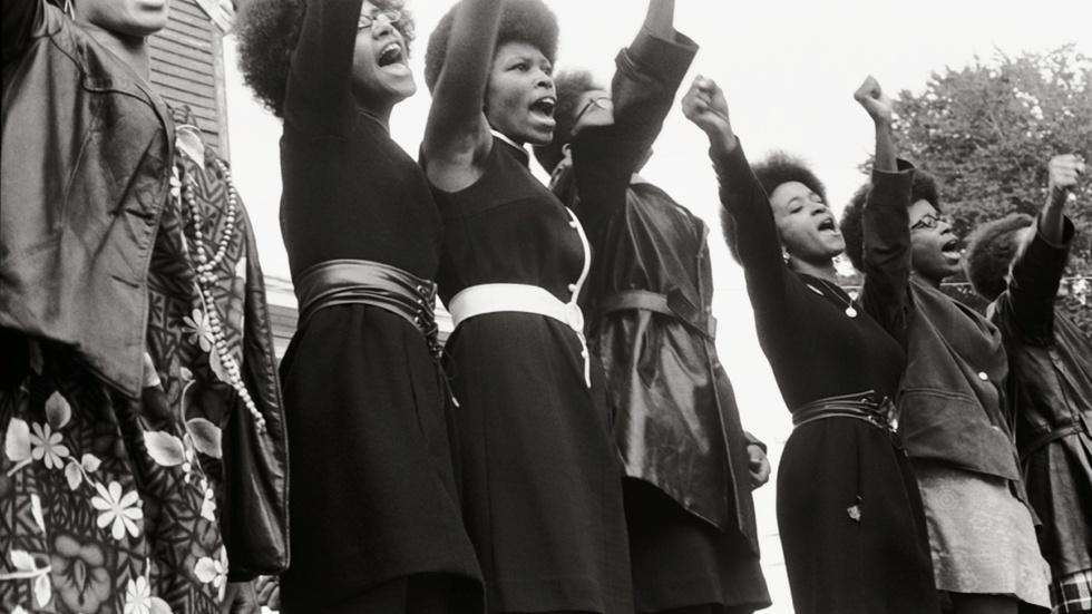 The Black Panthers: Vanguard of The Revolution (Theatrical) image