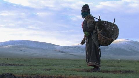 Independent Lens -- S13 Ep22: Tibetan Nomads Negotiate the Crossroads Between Tr