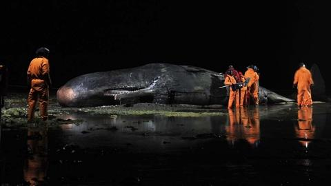 Inside Nature's Giants -- Episode 1 Preview | Sperm Whale