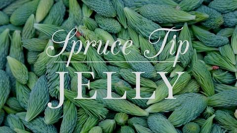 Kitchen Vignettes -- S2 Ep11: Spruce Tip Jelly