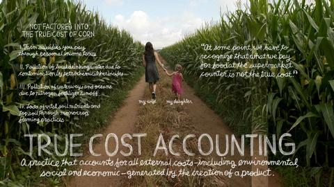 The Lexicon of Sustainability -- True Cost Accounting: The Real Cost of Cheap Food