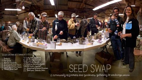 The Lexicon of Sustainability -- Seeds