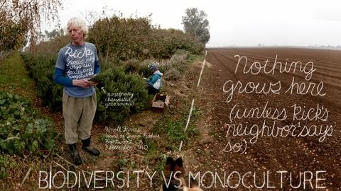 The Lexicon of Sustainability -- Unconventional Agriculture