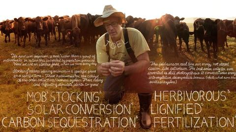 The Lexicon of Sustainability -- Grass Fed