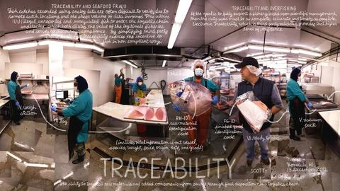 The Lexicon of Sustainability -- Traceability