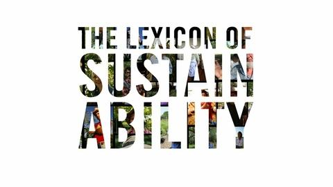 The Lexicon of Sustainability -- What Is The Lexicon of Sustainability?