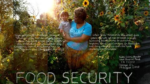 The Lexicon of Sustainability -- Food Security