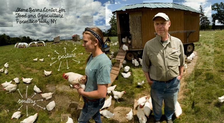 The Lexicon of Sustainability: 57 (The Average Age of the American Farmer)