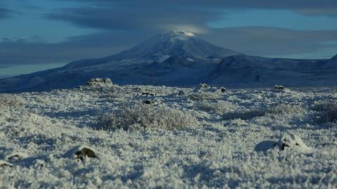 Life on Fire -- Icelandic Volcanoes