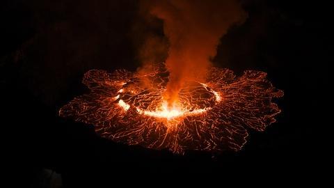 Life on Fire -- Phoenix Temple