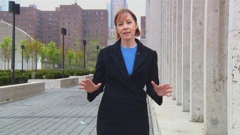 Live From Lincoln Center -- Suzanne Vega on Dirty Blvd.
