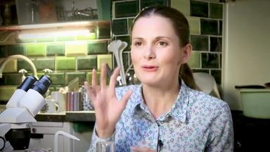 Louise Brealey on Fans and Social Media