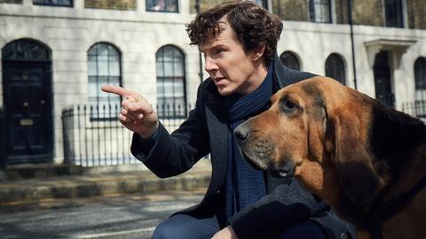 Sherlock -- Gone to the Dogs