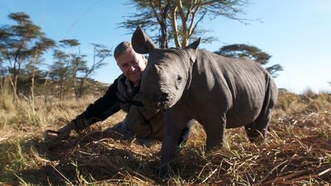 My Wild Affair -- The Rhino Who Joined the Family - Preview