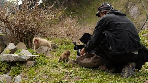 Nature -- Behind The Scenes: Making of Snow Monkeys