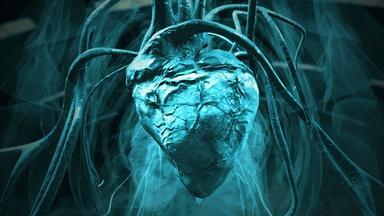 The 500-Pound Dinosaur Heart