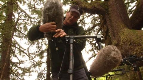 Nature -- S30 Ep6: Sound in the Field
