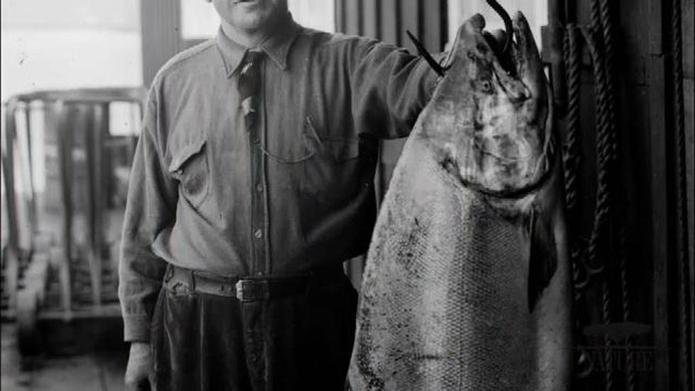 Education | Humans and Salmon image