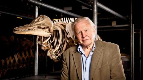 "Attenborough's Life Stories, ""Our Fragile Planet"" - Preview"