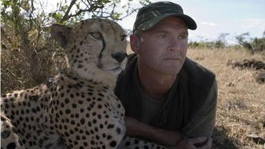 The Cheetah Orphans - Preview