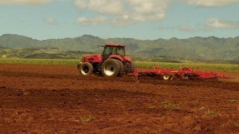 PBS NewsHour -- GMO seeds grow into big fight on Kauai