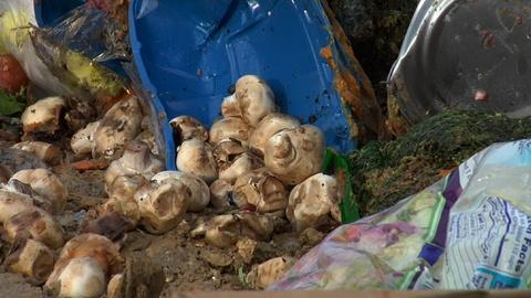 PBS NewsHour -- Stopping food waste in America