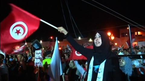 PBS NewsHour -- Understanding Arab Spring struggles and success