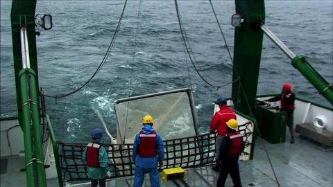 PBS NewsHour -- Fishing for data in the radioactive waters off Fukushima