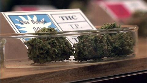 PBS NewsHour -- High hopes for a budding cannabis industry