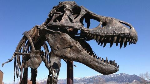 PBS NewsHour -- How to 3-D print a dinosaur