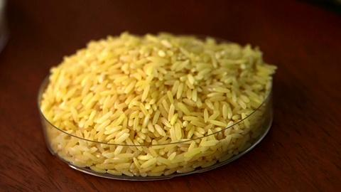 PBS NewsHour -- GMO debate grows over golden rice in the Philippines