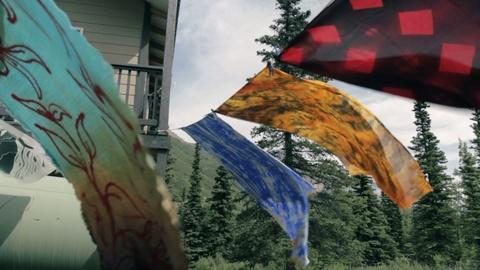 PBS NewsHour -- One Alaskan artist makes unpredictable patterns with silk