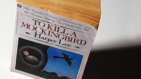 PBS NewsHour -- Rediscovered book by Harper Lee promises new story of Scout