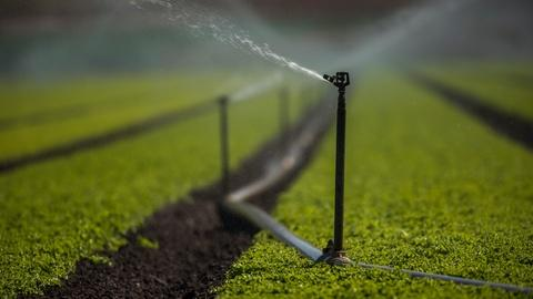 PBS NewsHour -- California farmers give up water to help fight drought