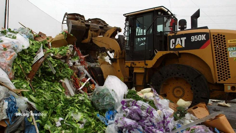 Why does almost half of America's food go to waste? image
