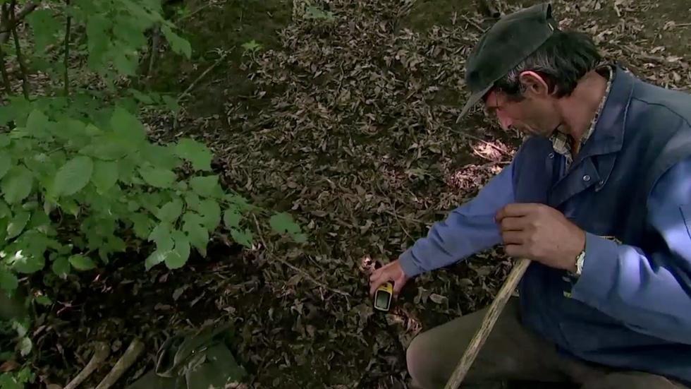 A grim search for Srebrenica massacre victims image