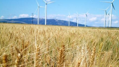 PBS NewsHour -- Can Denmark make energy demand follow renewable supply?