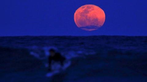 PBS NewsHour -- Skygazers moonstruck over 'super' rare eclipse