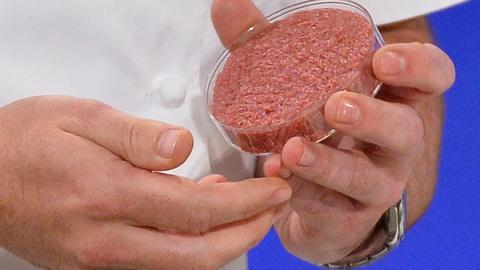 PBS NewsHour -- Is it possible to build 'meat' out of plant protein?