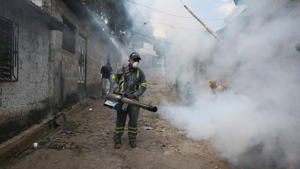 Mosquito breeding grounds is front line in Zika fight image