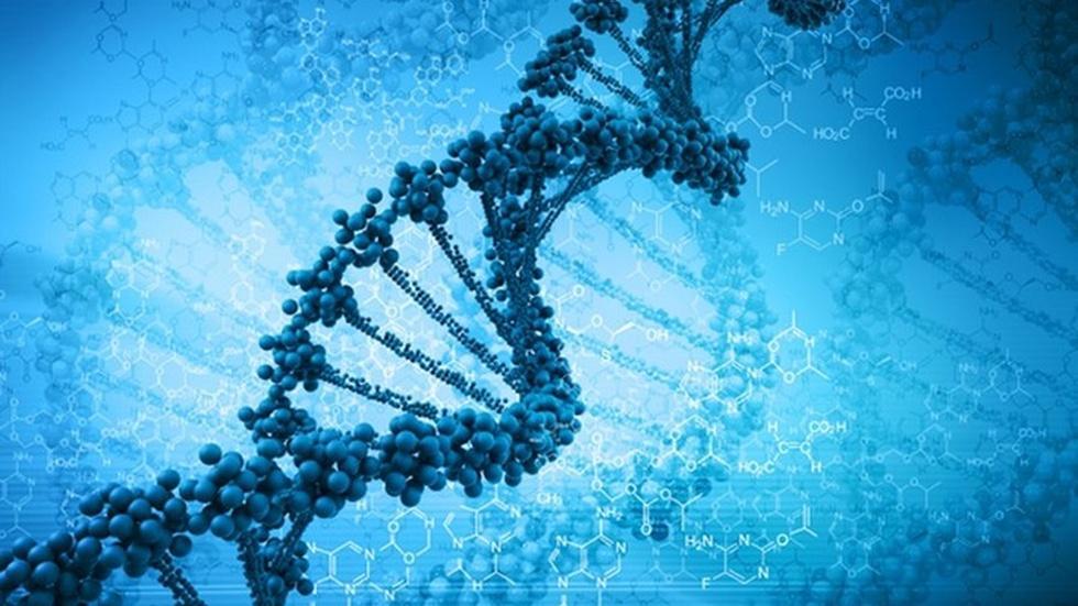 Three-parent DNA treatment for rare defect raises debate image