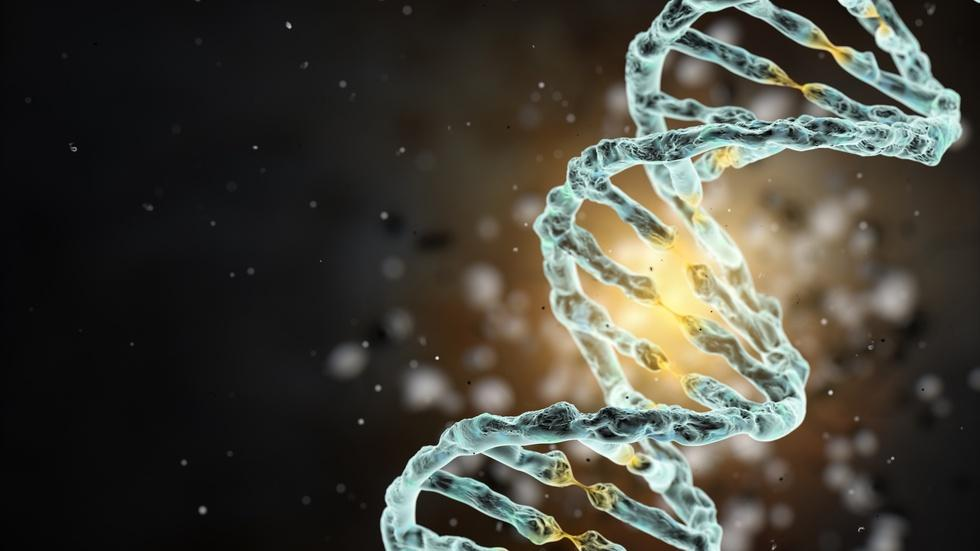 Our long and winding road to understanding 'The Gene' image